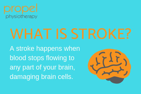 what is stroke infographic Propel Physiotherapy