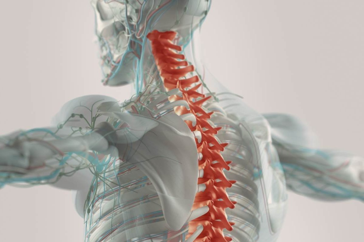 Spinal Cord Injury Rehabilitation Propel Physiotherapy Clinic Toronto