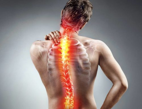 Physio or Chiro for Back Pain?