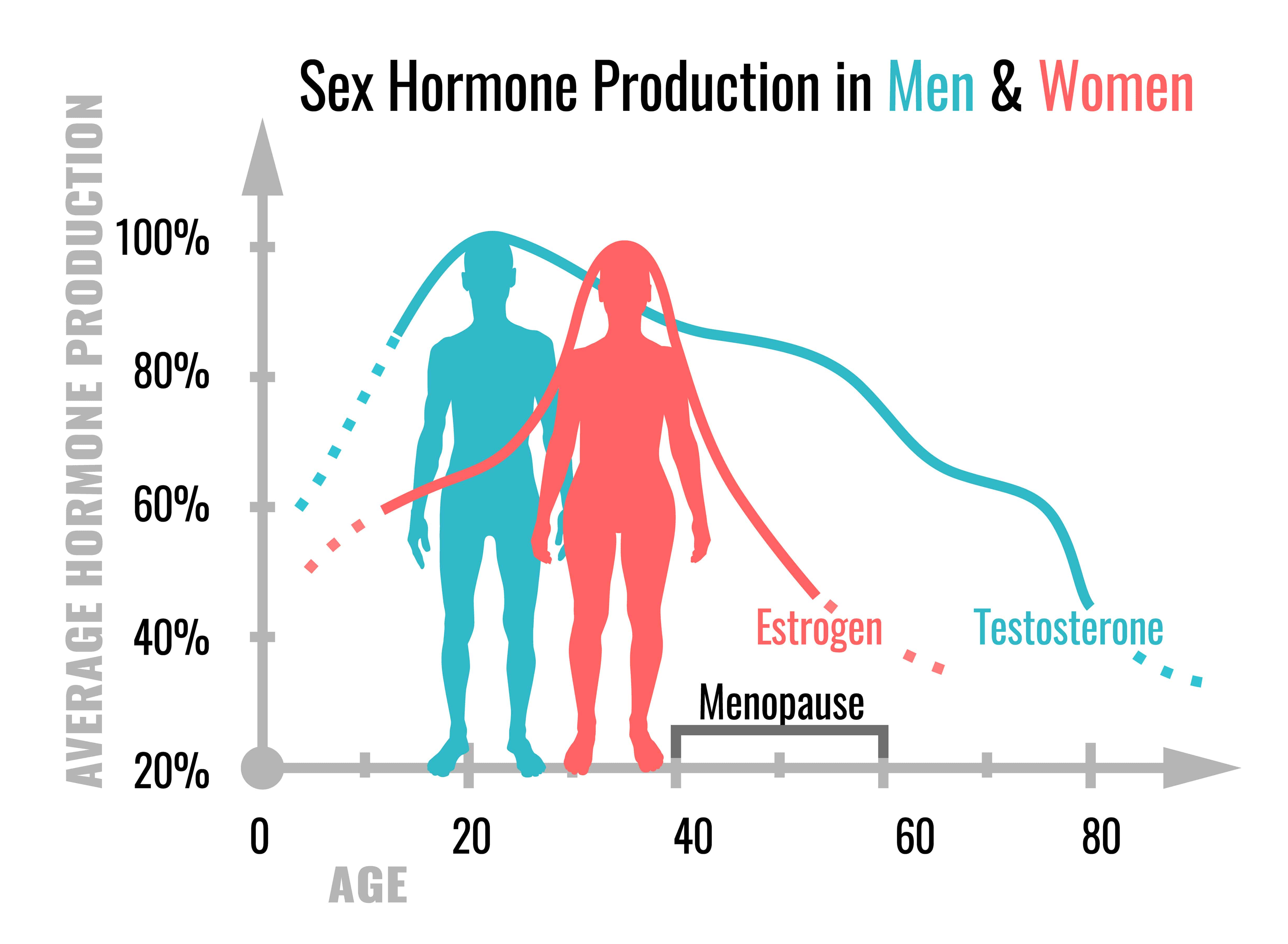 sex hormone production in men and women osteoporosis prevention propel physiotherapy