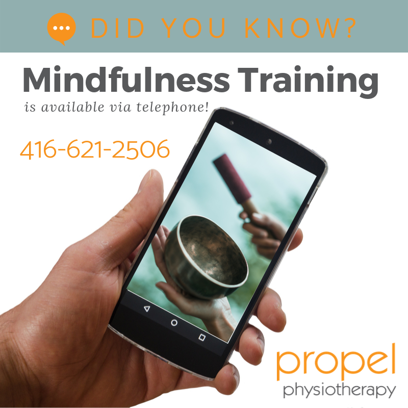mindfulness training available via telephone or video conferencing