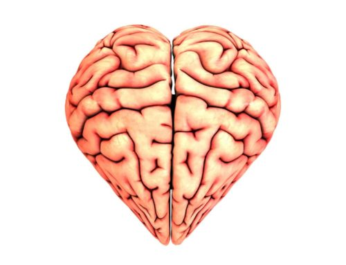 Effects of TBI on Heart Health
