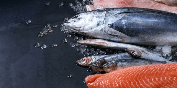 heart healthy foods fatty fish fish oils Propel Physiotherapy
